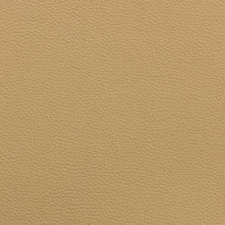 Leather II - beige / beige