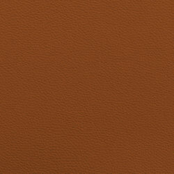 Leather II - toffee / toffee